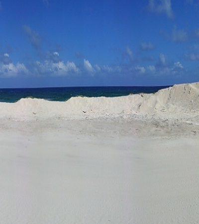 Confirma Profepa daño a la anidación de tortugas por robo de arena en Punta Morena, en Cozumel