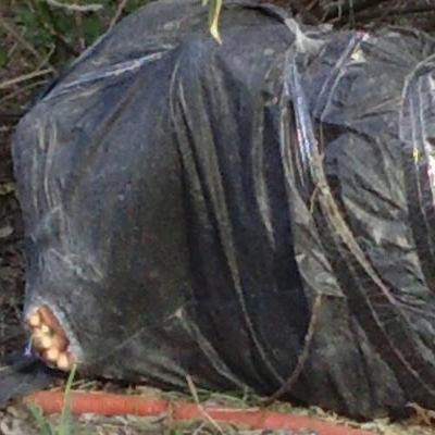 Embolsado encontrado en Playa fue estrangulado, revelan; aún no está identificado