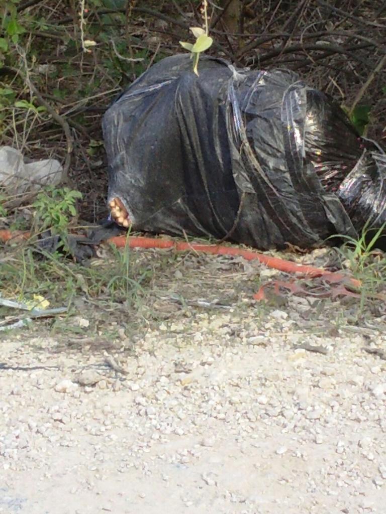 ASESINADO Y EMBOLSADO EN PLAYA DEL CARMEN: Encuentran cuerpo de una persona tirado en camino de terracería al poniente de la ciudad