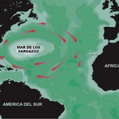 RECORTAN TURISTAS VACACIONES POR SARGAZO: Problema afecta a todos los destinos del Caribe