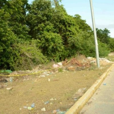 Frustran nueva invasión en predio clausurado en la zona del fraccionamiento 'In House' en Playa del Carmen