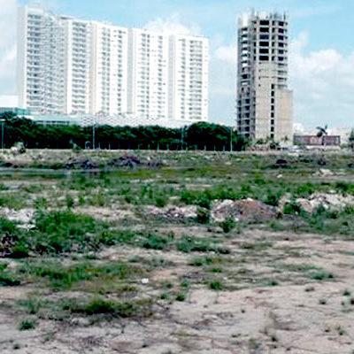 AVALA PROFEPA DESMONTE DE MANGLAR EN MALECÓN TAJAMAR: Polémica remoción de vegetación en Cancún, al amparo de la autorización vigente, resuelve