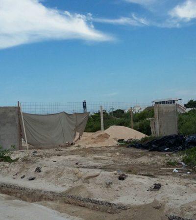 SOLAPA AYUNTAMIENTO ISLEÑO DESTRUCCIÓN DE MANGLAR Y PALMA CHIT: Acusan a particulares de destruir calles con la complacencia de la comuna