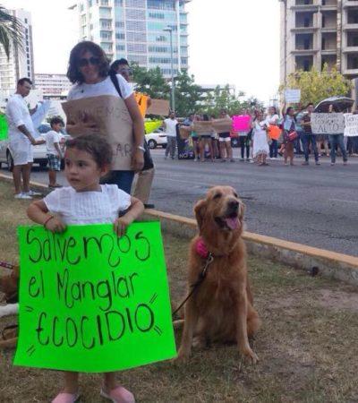 CRECE INDIGNACIÓN POR DEVASTACIÓN DE MANGLAR EN MALECÓN TAJAMAR: Nueva protesta para exigir se frene otro ecocidio en Cancún