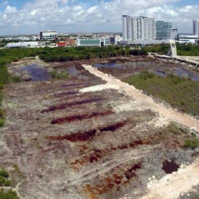 Por presentar información falsa, promueve Cemda invalidar la MIA del proyecto Malecón Tajamar