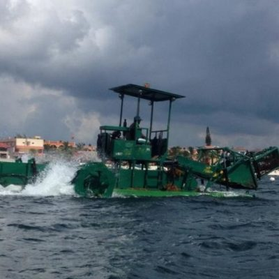 ALISTAN COSECHA EN EL MAR: Presentarán barco para recolectar el sargazo antes de que llegue a las playas