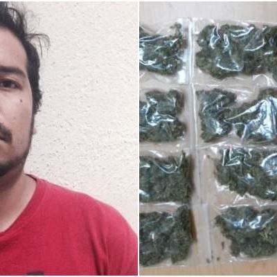 Detienen con marihuana a 'tirador' independiente en Cancún