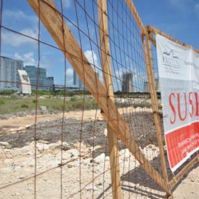MALECÓN TAJAMAR, 'CONGELADO': A pesar de presiones de empresarios, conceden amparo para evitar nuevo desmonte de manglar