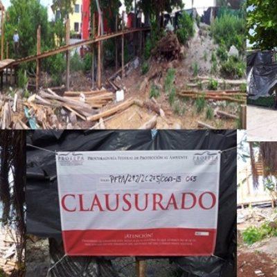 Por falta de permisos ambientales, clausura Profepa proyecto de muelle y andador turístico en la laguna Nichupté de Cancún