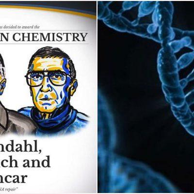 PREMIAN A SUECO, A ESTADOUNIDENSE Y A TURCO: Conceden el Nobel de Química a 3 científicos por estudios sobre reparación del ADN