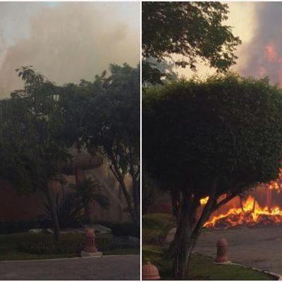 MEGA INCENDIO EN EL HOTEL IBEROSTAR PLAYACAR: Desalojan a turistas por siniestro en una palapa; espectacular columna de humo en Playa