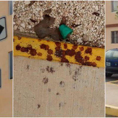 ESTREMECE FEMINICIDIO EN CANCÚN: Hallan a una joven semidesnuda y con el rostro destrozado por golpes en plena calle en Puertas del Mar