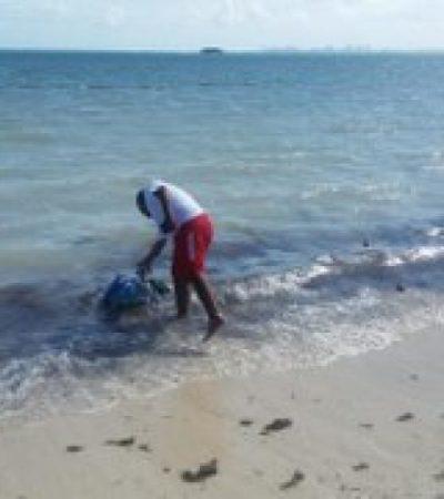 MACABRO HALLAZGO EN PLAYA DEL NIÑO: Recala entre bañistas bolsa con pollos degollados como ofrenda de santería
