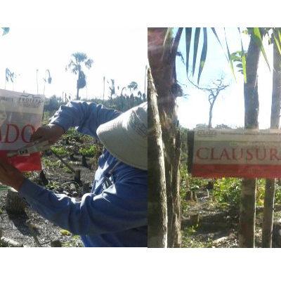Por remoción de vegetación para asentamientos humanos, clausura Profepa predio de 47 hectáreas dentro de la reserva de Yum Balam