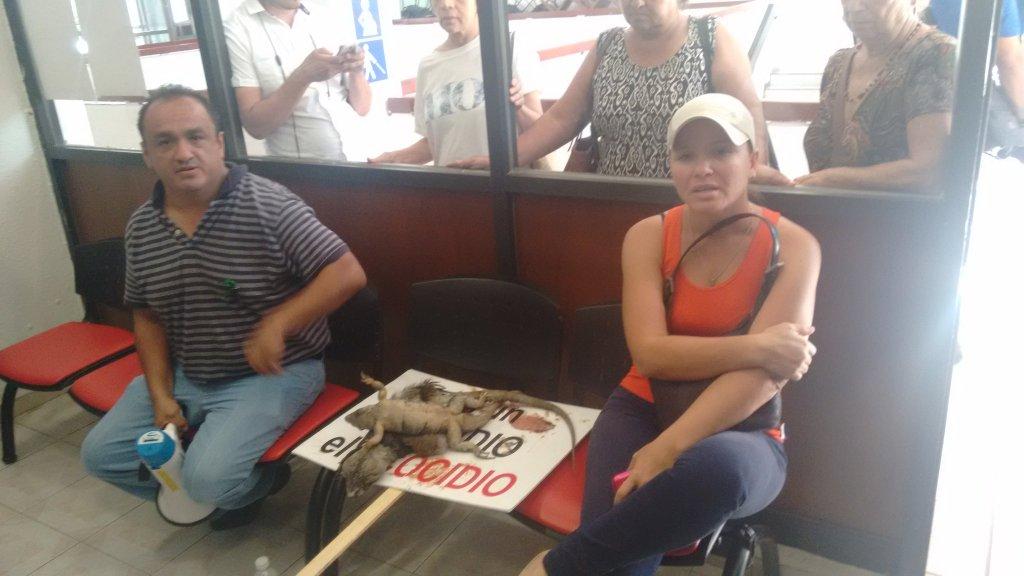FRENAN MOMENTÁNEAMENTE TALA Y RELLENO EN MALECÓN TAJAMAR: Otorgan suspensión provisional que impide seguir devastación en Cancún