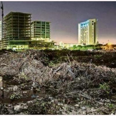 CANCÚN, CON NUEVOS 'ECOCIDIOS' EN PUERTA: Otros proyectos podrían ser tan devastadores con el de Malecón Tajamar, advierte Graciela Saldaña