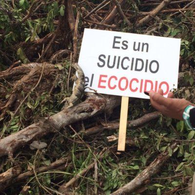 """""""NO MÁS PROYECTOS ECOCIDAS"""": Punto de acuerdo en el Congreso para exigir al gobierno proteger el medio ambiente por encima de intereses económicos"""
