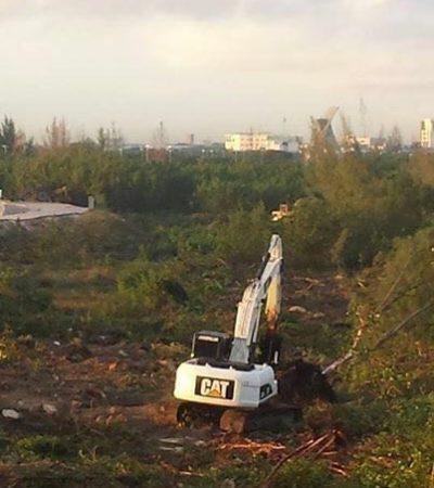 Por devastación en Malecón Tajamar, piden se le quite a Cancún la cumbre mundial ambiental