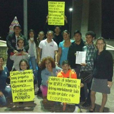 Instalan activistas campamento en Malecón Tajamar para evitar otro 'madruguete' contra el manglar