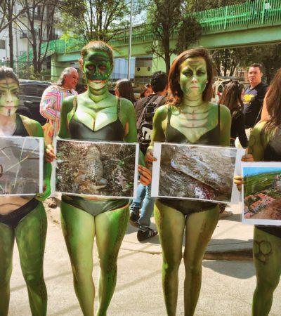 SE AFERRA FONATUR A SU 'VERDAD HISTÓRICA': Niega daño ecológico en Malecón Tajamar y dice que 'impacto' fue 'previamente calculado'