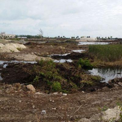 NO HAY VUELTA DE HOJA EN TAJAMAR: Tras devastación, proyecto no se puede echar atrás, dice Semarnat; COP 13 sigue en pie pese a reclamos