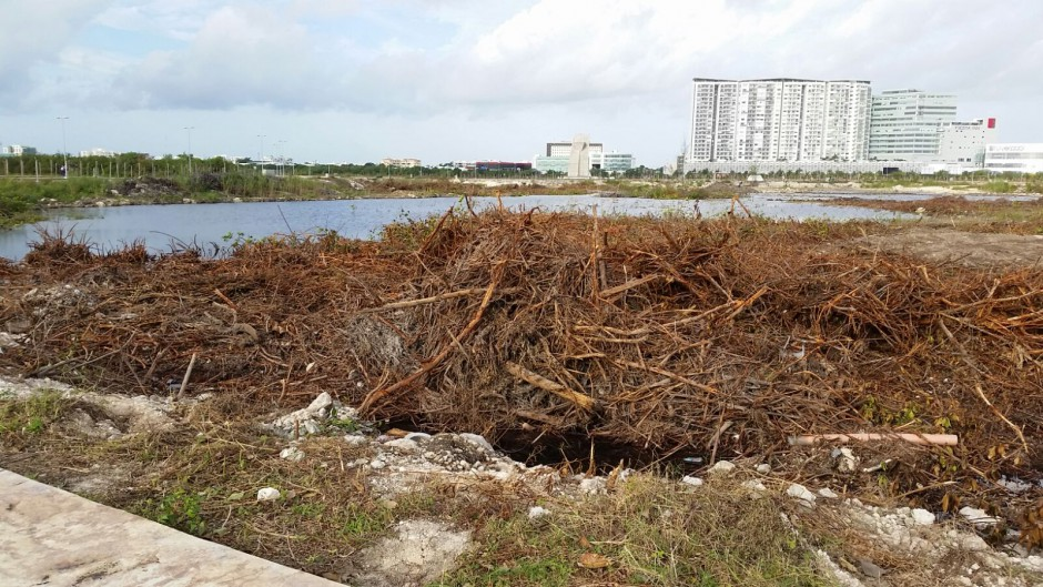 'PAPA CALIENTE' | PIDE CALDERÓN 'NO LE ECHEN AL MUERTO': Niega ex Presidente aprobación del proyecto Malecón Tajamar; Fonatur lo refuta y exhibe
