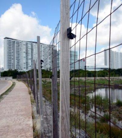 REACTIVARÍAN PROYECTOS EN EL MALECÓN TAJAMAR: Aseguran haber destrabado parte del conflicto legal por daño al manglar