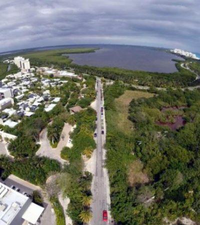 También peligran manglares en Punta Nizuc por proyecto de hotel del Grupo Riu