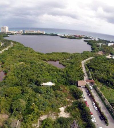 REBOTA SEMARNAT 2 HOTELES: Rechazan proyectos Punta Jade en Tulum y Holbox Blue