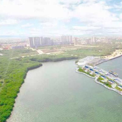 LA DESTRUCCIÓN QUE VIENE: Sin mencionar a Borge,  difunde Televisa negocio de navieras detrás de la devastación de manglar en Malecón Tajamar