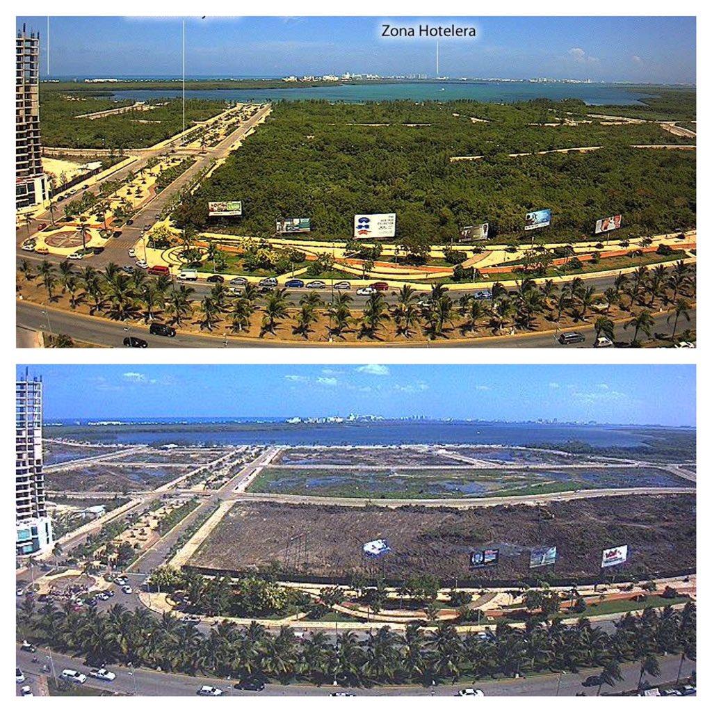 El antes y el después del Malecón Tajamar. En menos de dos días, fue desmontado más del 90 por ciento del manglar.