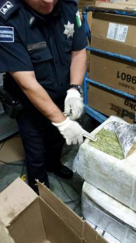 Decomisan en Oaxaca más de 100 kilos de marihuana con destino a Chetumal