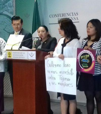 Por Malecón Tajamar, exige diputada por QR sancionar a titular de Profepa, Semarnat y Fonatur