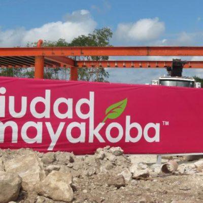 Abre Semarnat consulta pública para el proyecto 'Jardines de Ciudad Mayakoba' en Playa del Carmen