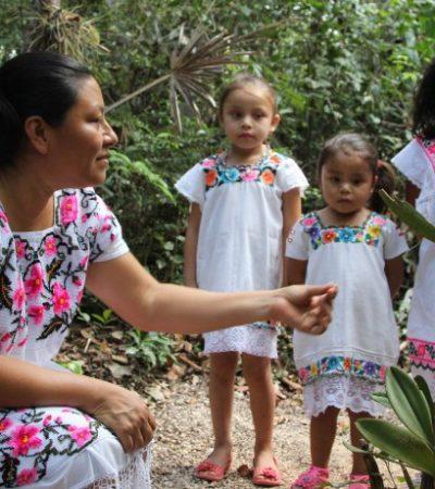 Investigador maya realizará periplo por QR para promover la lengua nativa con talleres y conferencias