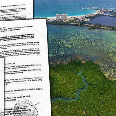 LOGRAN CANCELACIÓN DEL HOTEL RIU EN PUNTA NIZUC: Otorga juez suspensión definitiva contra proyecto que amenazaba manglares en Cancún