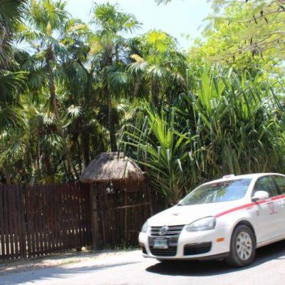 DAN REVÉS A LA JECA: Ordena juez restituir el desalojado predio 'Dos Ceibas' en la zona costera de Tulum