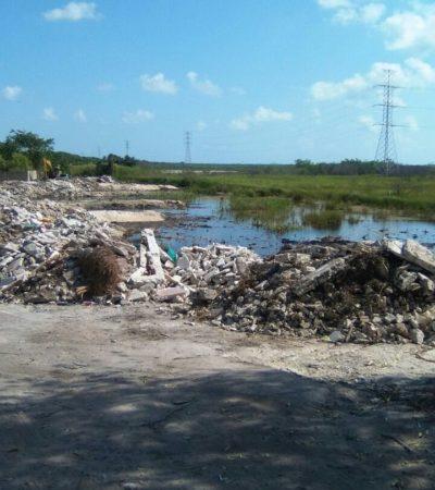 Clausura Profepa predio denunciado por relleno de humedales en la Zona Hotelera de Cancún; extraño: no aparece el nombre del propietario