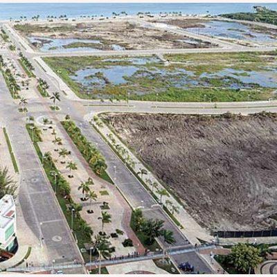 Altavoz | Paul y los terrenos municipales de Tajamar