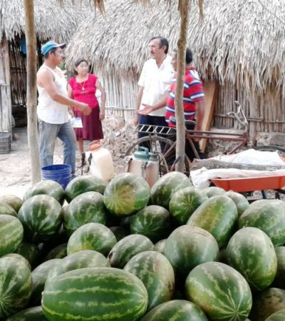 Gobierno de la coalición será un aliado de los campesinos de JMM: Domingo Flota