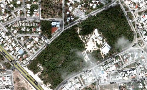 Anuncia Julián Ricalde que retomará el proyecto ambientalista del 'Ombligo Verde' de Cancún