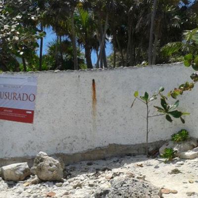 SIGUEN REVISIONES AMBIENTALES EN LA RIVIERA MAYA: Por impacto ambiental, clausura Profepa otros 3 desarrollos turísticos en Akumal y Tulum