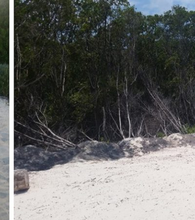 Por relleno de humedal, clausura Profepa desarrollo turístico en la 'Milla de Oro' entre Cancún y Puerto Morelos