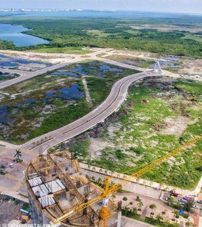 USARON 'EMPRESA FANTASMA' PARA JUSTIFICAR ECOCIDIO: Exhiben trampas del estudio de Semarnat para dejar sin protección el manglar en Malecón Tajamar