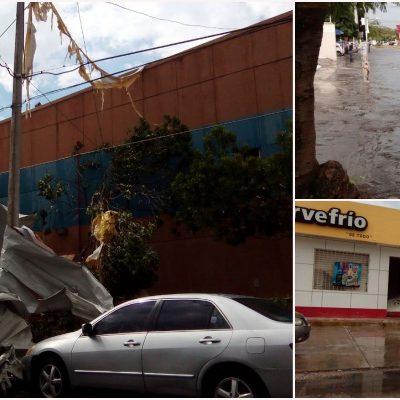 AZOTA TURBONADA A CANCÚN Y PLAYA: Fuerte aguacero causa destrozos en comercios y autos; caen árboles y se inundan calles; reportan al menos un herido