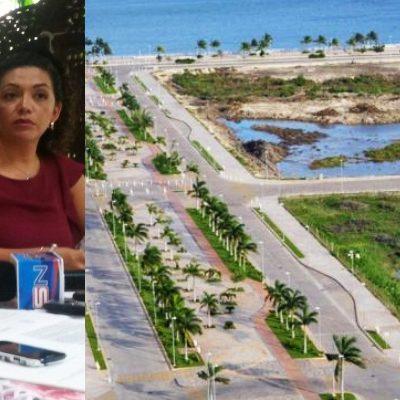 """""""LE ESTÁN CUIDANDO LA ESPALDA A FONATUR"""": Apelarán ambientalistas resolutivo de Profepa que declara legal devastación de manglar en Malecón Tajamar"""
