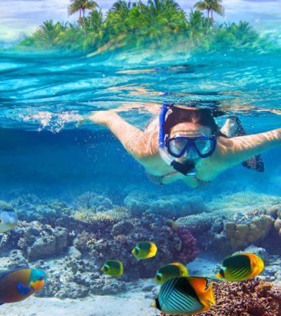 Para no inhibir inversiones turísticas, pide IP reducir proyecto de ANP en el Caribe mexicano