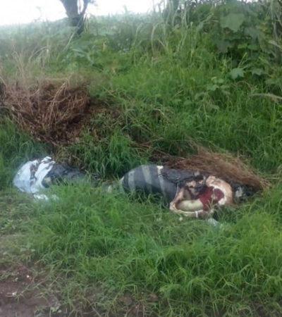 ENMALETADO EN VERACRUZ: Hallan restos humanos en la residencial playa Costa de Oro en Boca del Río