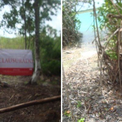 Clausura Profepa predio en ejido Juan Sarabia por desmonte y quema no autorizados en la colindancia de la laguna Balacar
