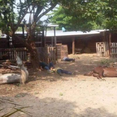 CORRE SANGRE EN CHIAPAS: Cinco muertos durante un enfrentamiento entre dos familias